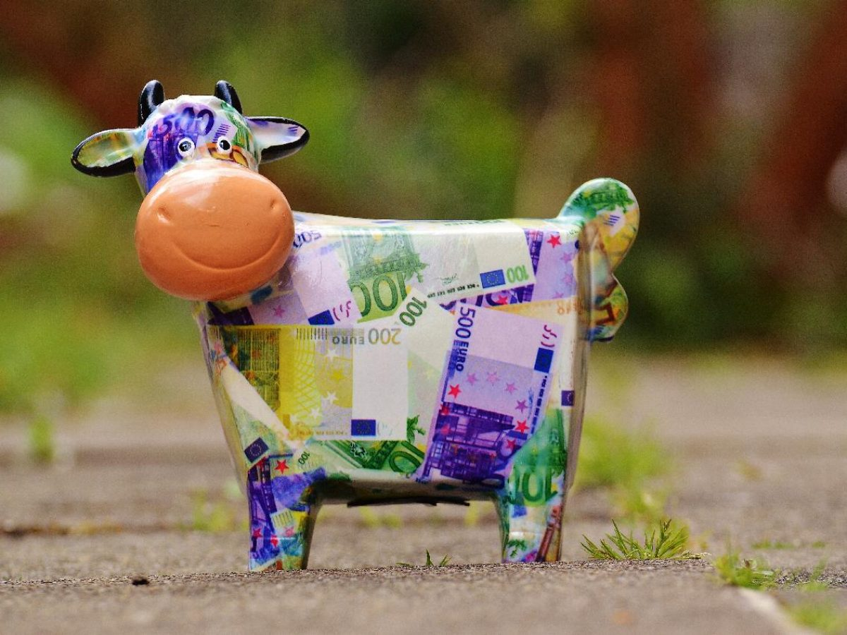 Colourful money cow